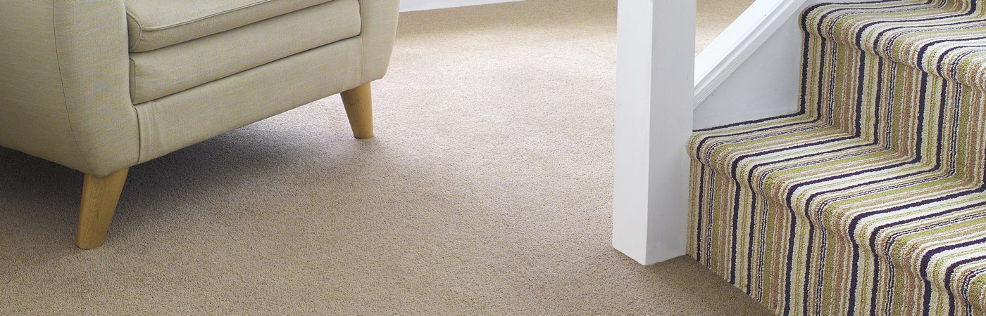 Woollen Carpets And Wool Mix Carpets Forest Flooring In